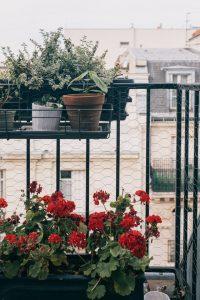 Balkon begrünen: Ideen und Tipps