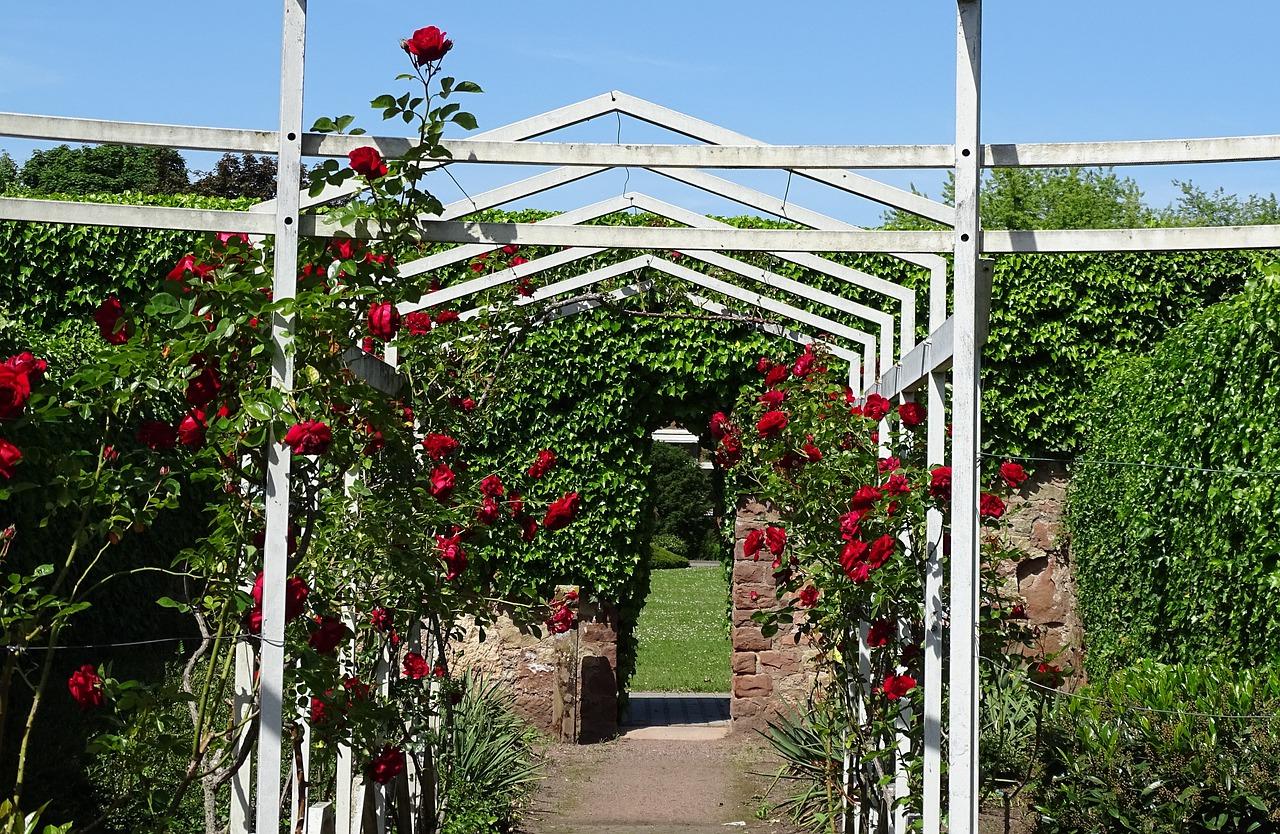 Rosenspalier aus Holz